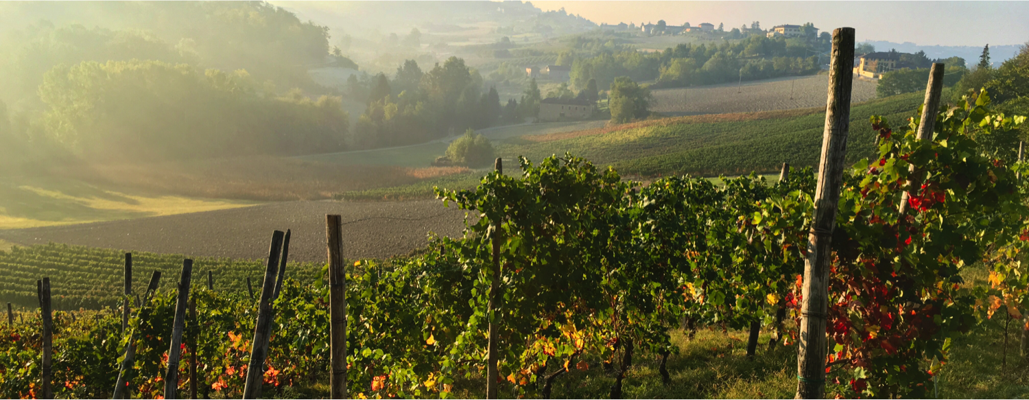 Located in the beautiful Monferrato